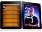 e-bookZijnwijonsbrein-
